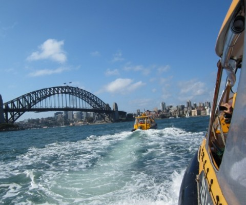 Amazing Race Sydney Harbor Water Taxi Crossings to Luna Park by Boats
