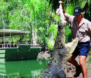 Wildlife-encounters-amazing-cairns
