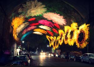 Vivid Sydney festival celebration on a night amazing race through Hyde Park Sydney